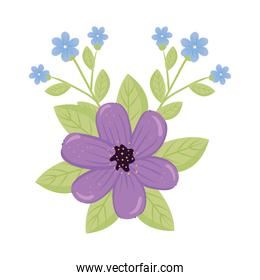 purple and blue flowers with leaves vector design