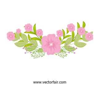 pink flowers with leaves vector design