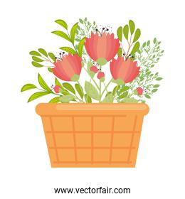 red flowers with leaves inside basket vector design