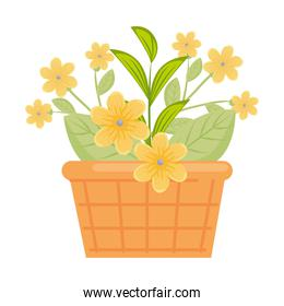 yellow flowers with leaves inside basket vector design