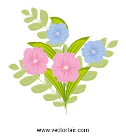 blue and pink flowers with leaves vector design