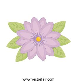 purple flower with leaves vector design