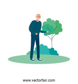 Grandfather avatar at park with tree vector design