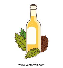 bottle of beer with hop seeds on white background