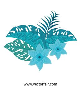 flowers blue color, with branch and tropical leaves on white background