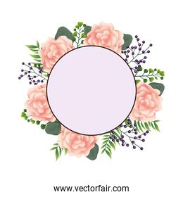 beautiful pink flowers in circular frame decorative