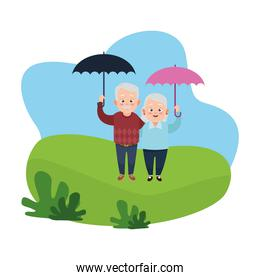 cute happy grandparents couple with umbrellas avatars characters
