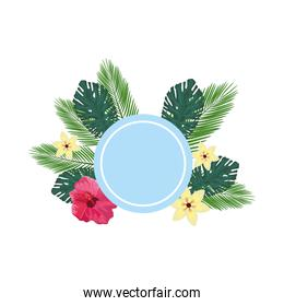 tropical leafs palms and flowers circular frame