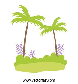 tropical palm trees branches bush cartoon isolated design icon