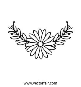 cute flower on white background