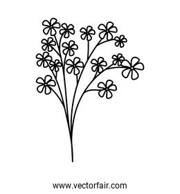 cute flowers on white background