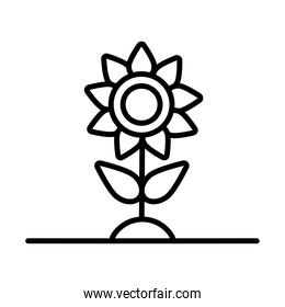 flower growth plant line style icon