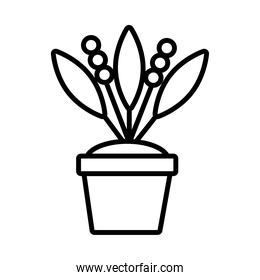 growth plant with seeds in ceramic pot line style icon