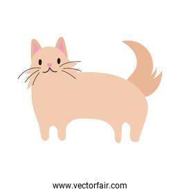 cute little cat pet hand draw style icon
