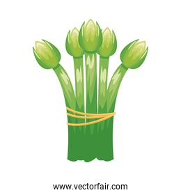 asparagus healthy vegetable detailed style icon