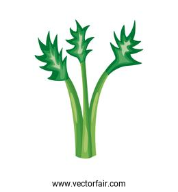 celery healthy vegetable detailed style icon