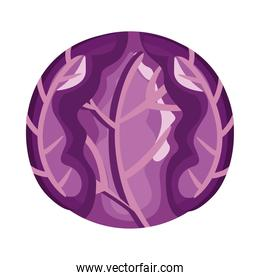 red cabbage healthy vegetable detailed style icon