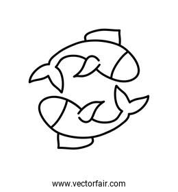 astrology concept, fishes symbol of pisces sign, line style
