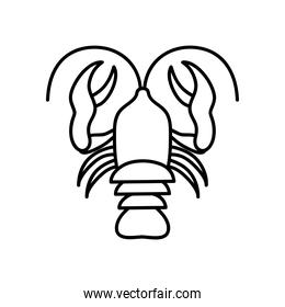crab symbol of cancer sign, line style