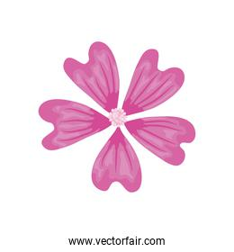beautiful pink flower icon, detailed style