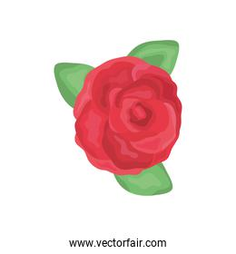 red rose with leaves icon, detailed style