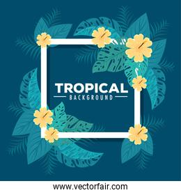 tropical background, frame of flowers yellow color with tropical leaves, decoration with flowers and tropical leaves