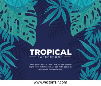 tropical background with branches and leaves