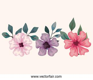 set of flowers, branches with leaves, nature decoration