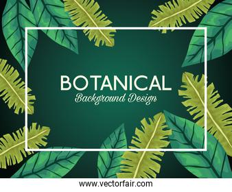 tropical leafs in square frame and lettering botanical background design