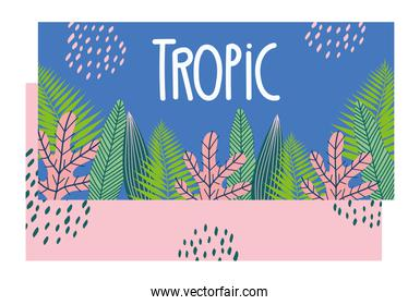 tropical pattern with leaves and plants on color background
