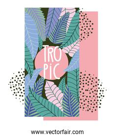 tropical leaves exotic botanical floral and herbs banner