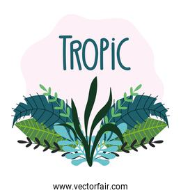 tropical leaves texture exotic foliage hand drawn lettering
