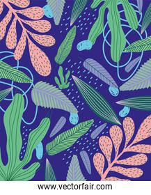 tropical leaves texture exotic abstract shapes decoration background
