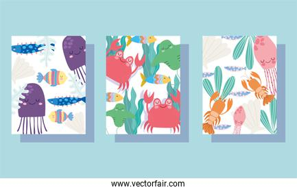 under the sea, wide marine life landscape cartoon jellyfish crabs lobster banner cover and brochure