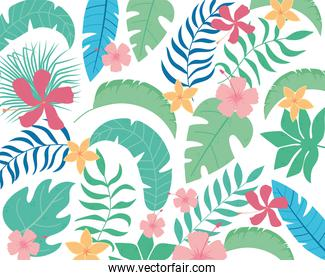 tropical leaves flowers leaf foliage vegetation plants background