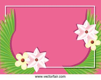 beautiful summer flowers with frame, template