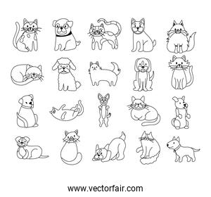 bundle of cats and dogs set icons