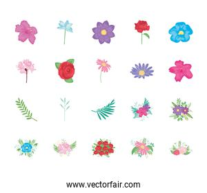 pink flower and beautiful flowers icon set, detailed style