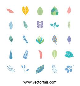 icon set of tropical leaves with abstract design, flat style