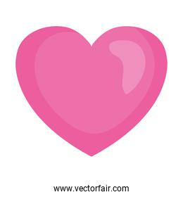 heart of pink color, on white background