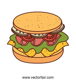 delicious sandwich on white background