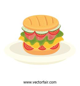 delicious sandwich in dish, on white background
