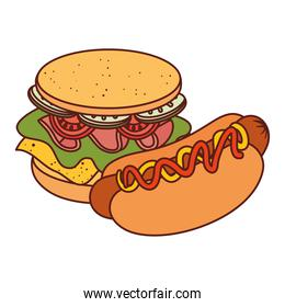 delicious sandwich with hot dog, on white background