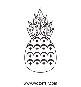 pineapple tropical fresh fruit icon
