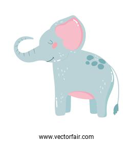 cute animals little elephant cartoon isolated icon design white background