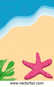 Beach with sea star and leaves top view detailed style icon vector design