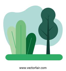 forest landscape natural scene icon