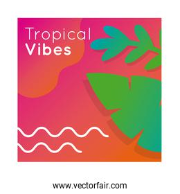 tropical vibes colorful banner with leafs plant