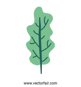 tree plant ecology nature icon