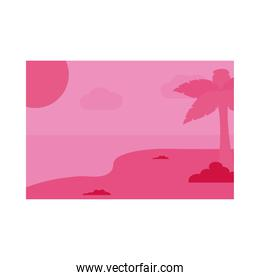 Summer pink banner with palm tree at beach vector design